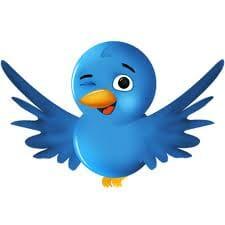 twitter birdie winking