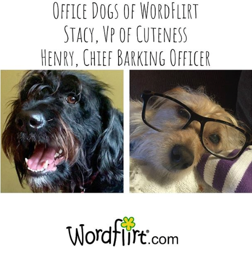 stacy and henry wordflirt mascots